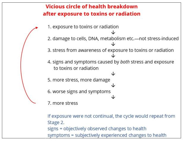 health breakdown vicious circle